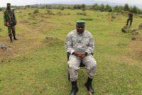 RDC : Le M23 exige à la Ceni et au gouvernement,l'organisation des élections inclusives.